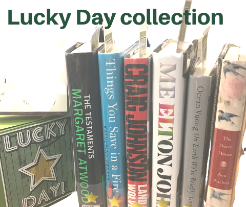 image of Lucky Day books