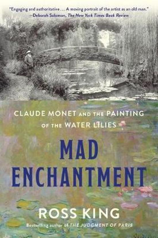 Mad Enchantment Book