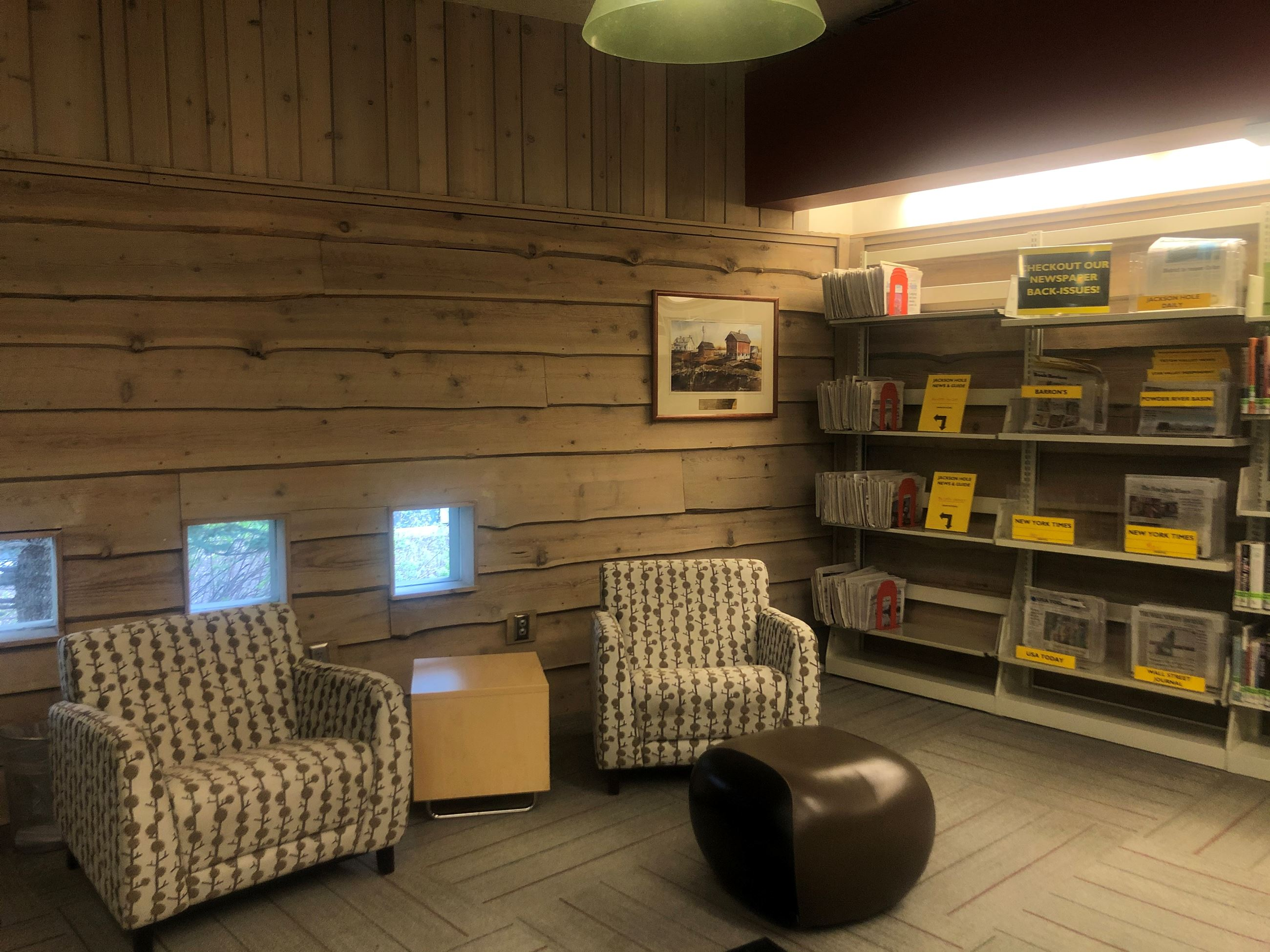 image from interior of library for zoom background